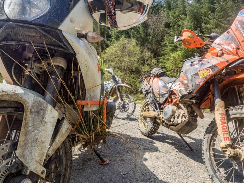 Taffy Dakar 2018